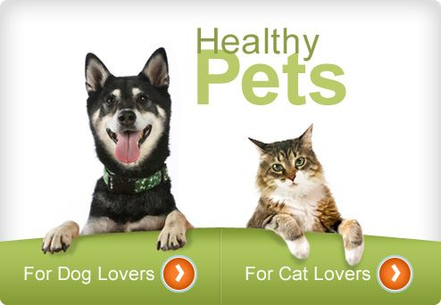 Healthy Pets