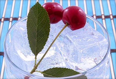 mineral water with chaste berry