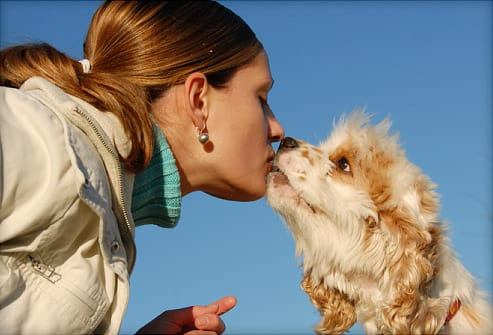 kissing woman and dog
