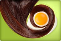 hair lock coiled around egg yolk