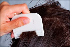 person using lice comb