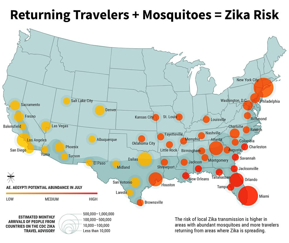 Zika Virus Symptoms Facts And Affected Countries: Zika Virus Symptoms, Countries, Risk, And Prevention