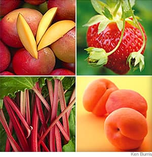 Spring Fruit Guide