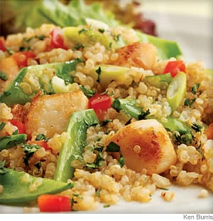 Toasted Quinoa Salad With Scallops and Snow Peas