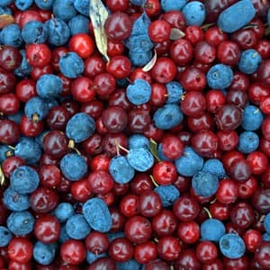 Cranberry Blueberry Pie
