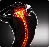 Fascinating Facts About Your Spine