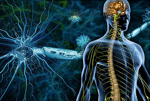 How diet may affect the progression of multiple sclerosis