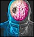 brain illustration stroke
