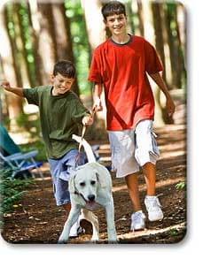 Teen boys walking dog