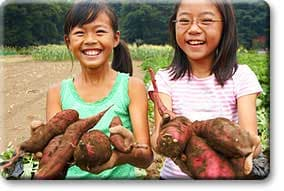 Tween girls holding sweet potatoes