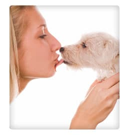 Picture of woman kissing dog
