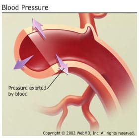 chronic low blood pressure with no symptoms is almost never