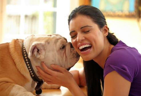 Woman doting on her bulldog