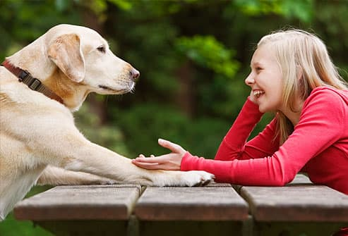 Slideshow: 14 Healthy Ways for Kids to Relax Relaxing Dog Scents