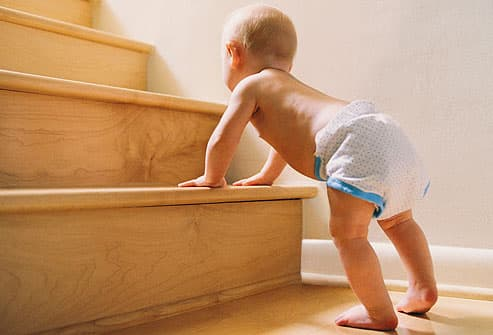 Baby about to climb stairs
