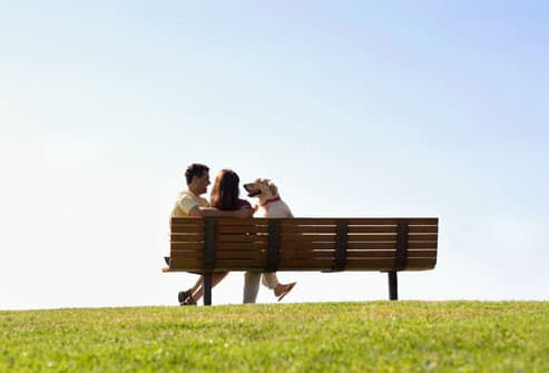 Couple Sitting on Bench With Dog