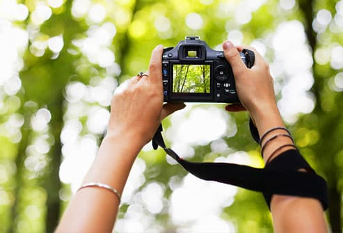 Woman photographing forest on digital camera