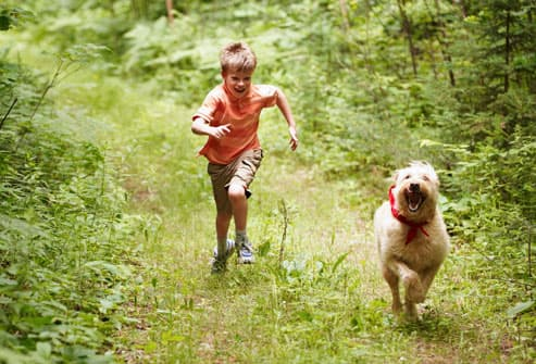 boy running with labradoodle in woods