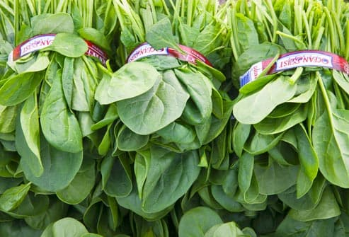 bundles of raw spinach