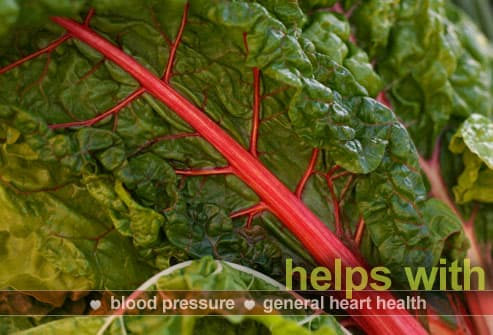 Leaf of Red Chard