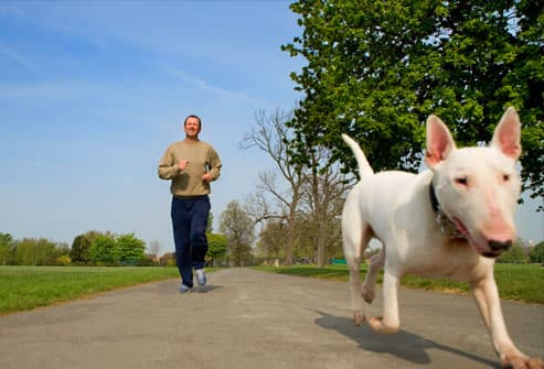 Man jogging down road with dog