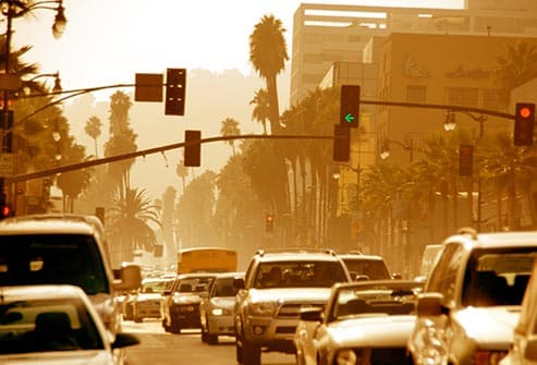 ***Best way to reduce air pollution?***?