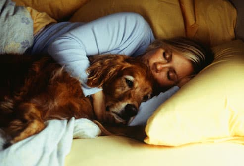 A Woman with a Dog and Cat Sleeping