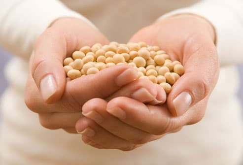 hands holding soy beans