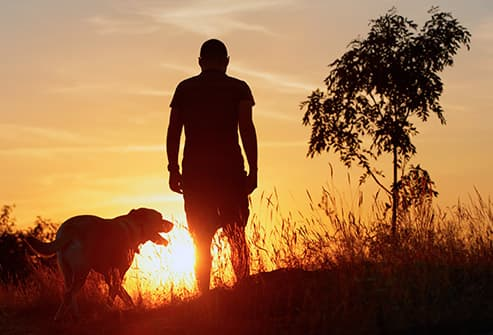 silhouette of man walking dog