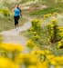 jogger running among flowering plants
