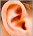 Side view of child's ear
