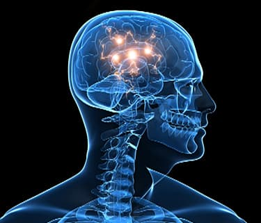 How Brain Function Differs in Men and Women - Watch WebMD Video