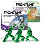 prevent an infestation with Frontline Plus