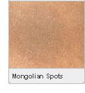 Picture of Mongolian Spots
