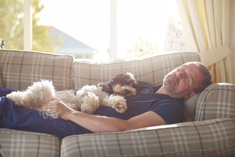 man napping with dog
