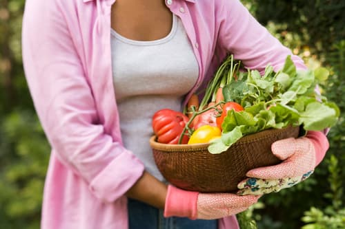 photo of woman carrying basket of fresh vegetables