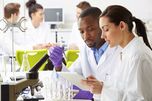 photo of lab researchers