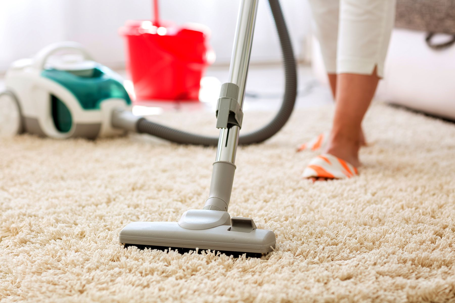 How To Get Rid Of Fleas On Hardwood Floors Naturally Two