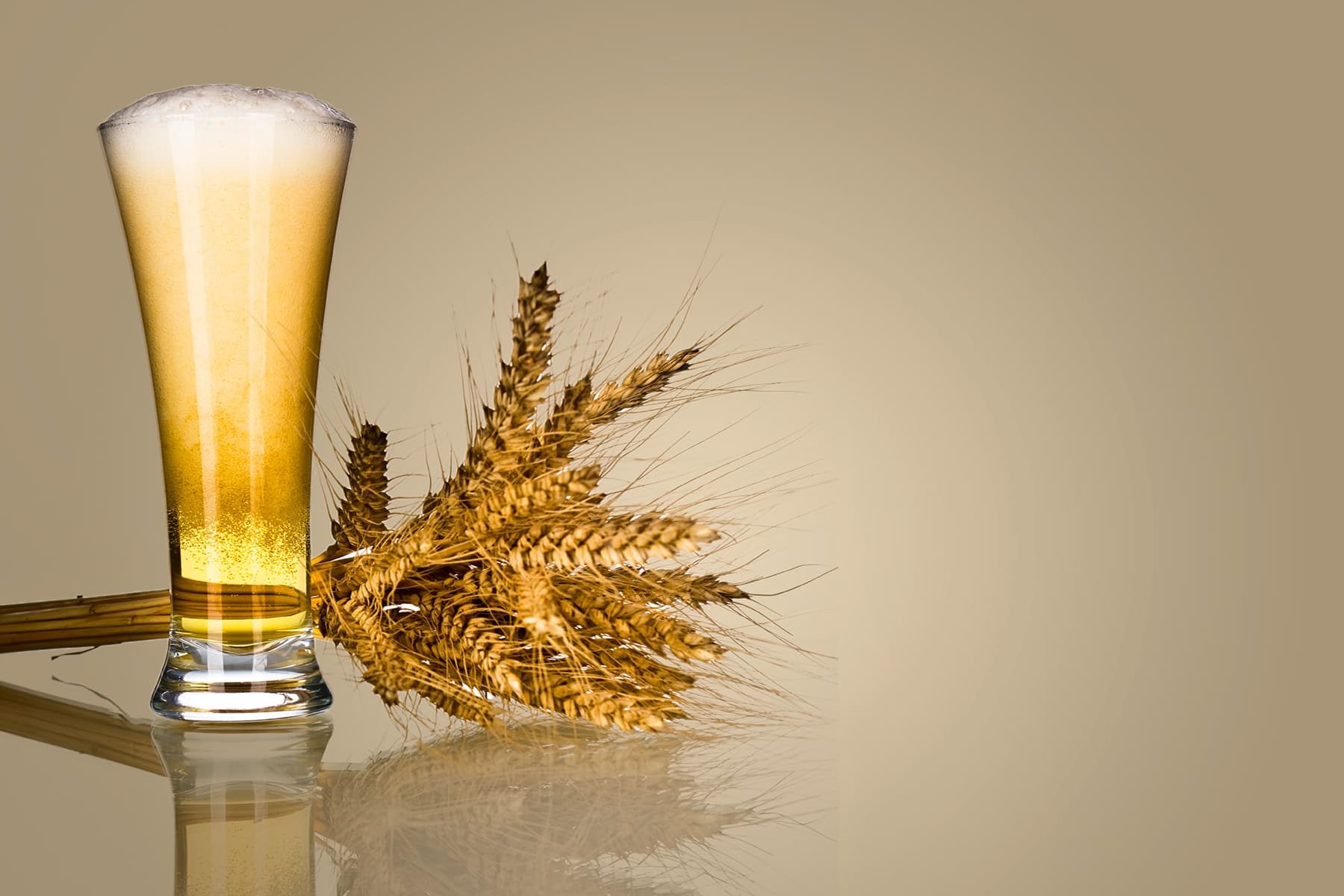beer and wheat