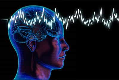 human brain waves