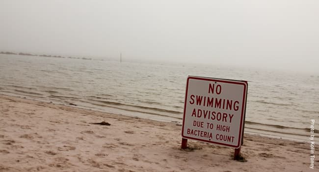 Almost 60 percent of U.S. beaches showed unsafe pollution levels in 2018
