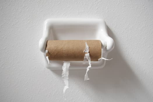 photo of empty toilet paper roll