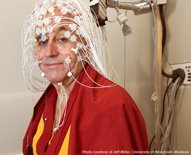 monk getting eeg