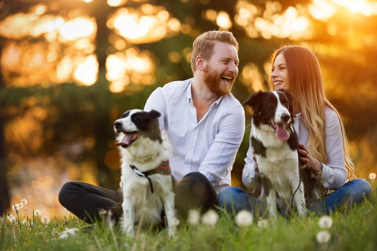 photo of couple relaxing outdoors with dogs
