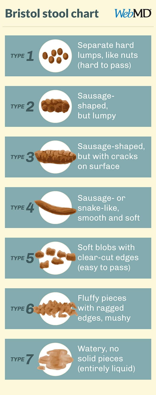 Bristol stool chart types of poop shapes textures consistency