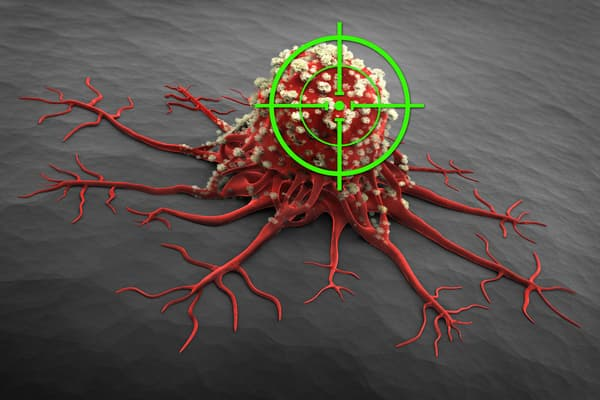 photo of targeted therapy on cancer cell concept