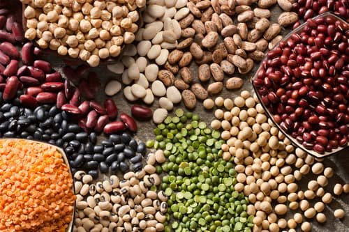 photo of variety of organic legumes