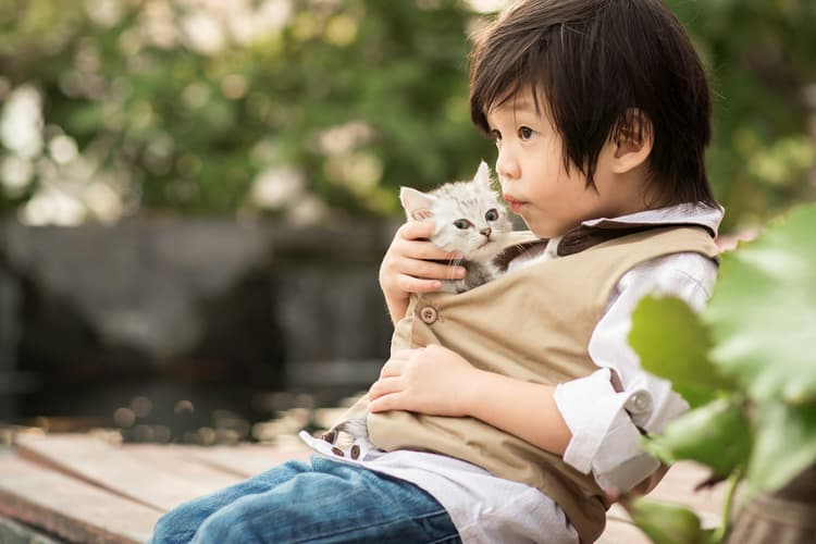 photo of young boy with kitten