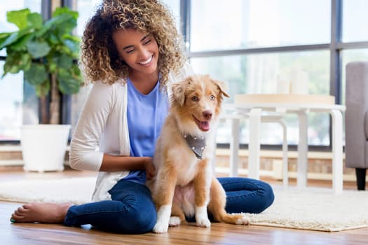 photo of young woman playing with dog
