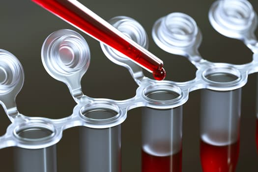 photo of blood tests